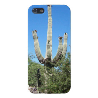 Southwestern Desert Saguaro Cactus Cover For iPhone SE/5/5s