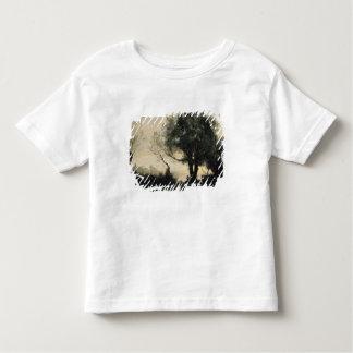Souvenir of Castel Gandolfo Shirt
