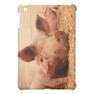 Sow and Piglets Case For The iPad Mini