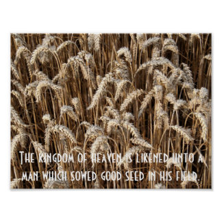 Sow Good Seeds Poster