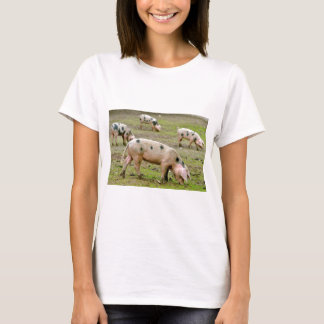 Sow of Bayeux T-Shirt