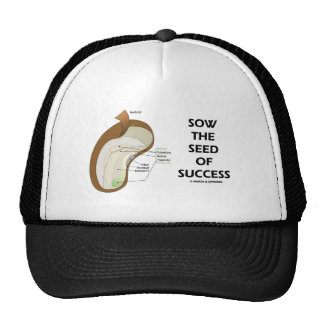 Sow The Seed Of Success (Seed Anatomy Humor) Mesh Hat