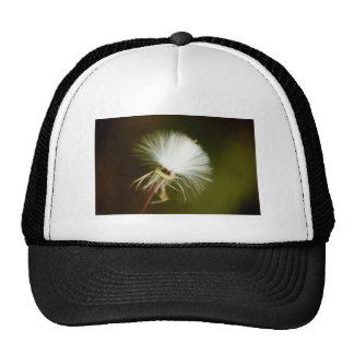 Sow Thistle Seed Pod Trucker Hat
