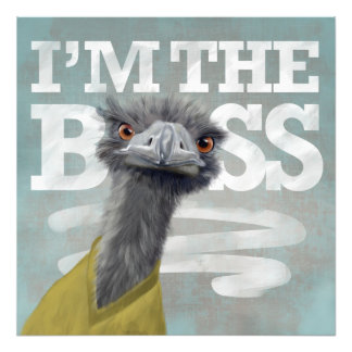 Soy Boss. Avestruz Cojinete
