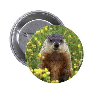 Soy botón de Groundhog Pin Redondo De 2 Pulgadas