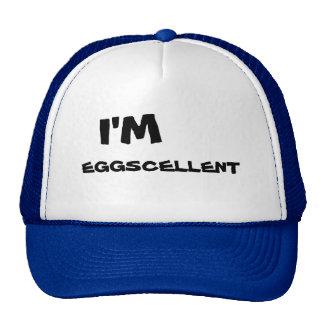 Soy casquillo del camionero de Eggscellent Gorros Bordados