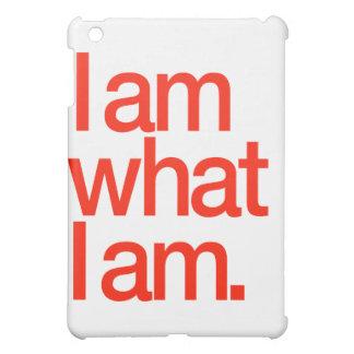 Soy cuáles soy