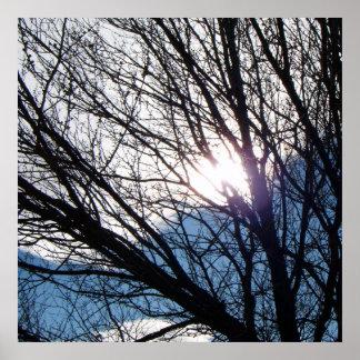 ¡Soy el árbol!!! ¡Usted sea el árbol!!! Póster