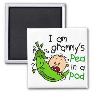 Soy el guisante de Grammy en una vaina Imán Cuadrado