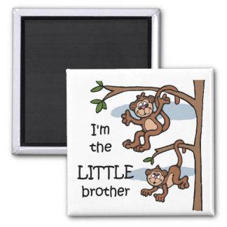 Soy el imán de pequeño Brother