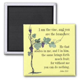 Soy el IMÁN del verso de la biblia del 15:5 de Jua