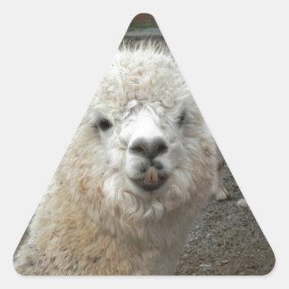 Soy el modelo pegatina triangular