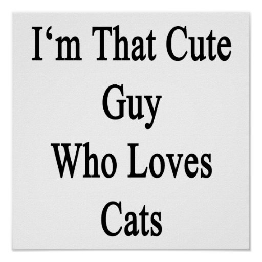 Soy ese individuo lindo que ama gatos póster
