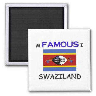 Soy famoso en SWAZILANDIA Imán De Nevera