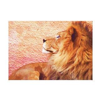 Soy Focused#3_ Lona Estirada Galerias