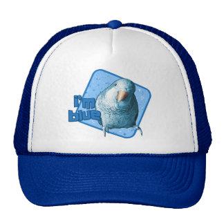 Soy gorra azul del Parakeet del Quaker