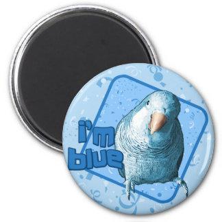 Soy imán azul del Parakeet del Quaker