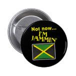 Soy Jammin Pins