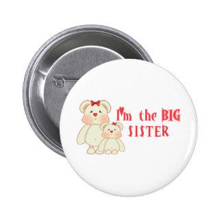 Soy la hermana grande (los osos) pins