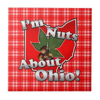 Soy Nuts sobre Ohio, nuez divertida del castaño de Tejas Ceramicas