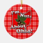 Soy Nuts sobre Ohio, nuez divertida del castaño de Ornamento De Reyes Magos