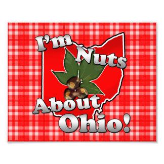 Soy Nuts sobre Ohio, nuez divertida del castaño de Fotografias