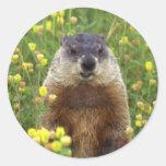 Soy pegatina de Groundhog