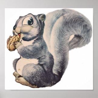 Soy poster Nuts de la ardilla