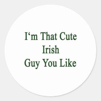 Soy que individuo irlandés lindo que usted tiene g pegatinas
