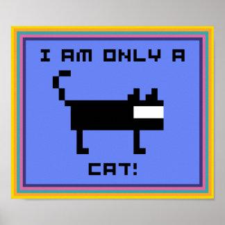 ¡SOY SOLAMENTE UN CAT POSTER