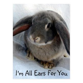 Soy todos los oídos para usted tarjeta postal