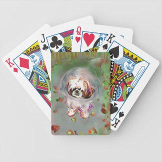 Soy un conehead barajas de cartas