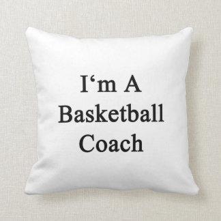 Soy un entrenador de béisbol cojin