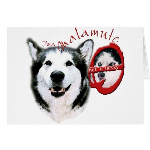 Soy un Malamute, yo no soy un perro esquimal Felicitacion