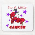 Soy un pequeño cáncer alfombrilla de raton