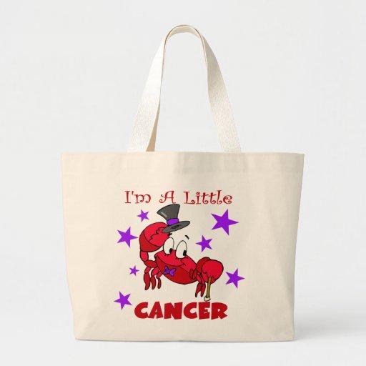 Soy un pequeño cáncer bolsa lienzo