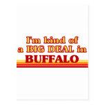 Soy un poco una GRAN COSA en búfalo Postal