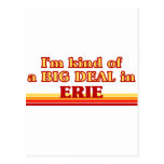Soy un poco una GRAN COSA en Erie Tarjeta Postal