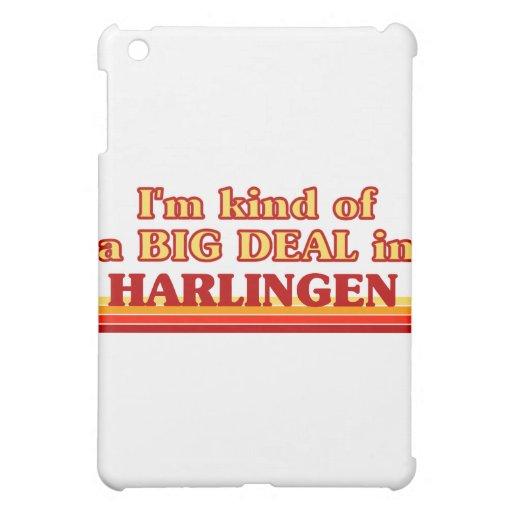 Soy un poco una GRAN COSA en Harlingen