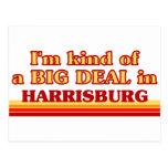 Soy un poco una GRAN COSA en Harrisburg Tarjetas Postales