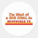 Soy un poco una GRAN COSA en Huntsville Pegatinas Redondas