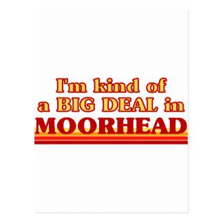 Soy un poco una GRAN COSA en Moorhead Postal