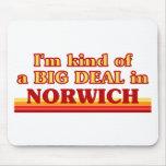 Soy un poco una GRAN COSA en Norwich Alfombrilla De Raton