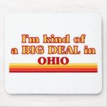 Soy un poco una GRAN COSA en Ohio Alfombrillas De Ratones