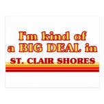 Soy un poco una GRAN COSA en orillas del St. Clair Postales