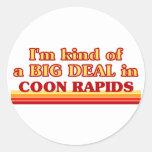 Soy un poco una GRAN COSA en Rapids del Coon Pegatina Redonda
