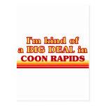 Soy un poco una GRAN COSA en Rapids del Coon Postal