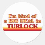Soy un poco una GRAN COSA en Turlock Pegatina Redonda