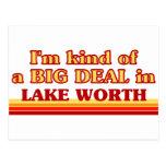 Soy un poco una GRAN COSA en valor del lago Postales