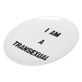 SOY UN TRANSEXUAL PLATOS DE COMIDAS